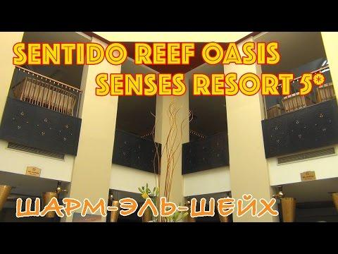 Египет, Шарм-эль-Шейх | Отели Reef Oasic Beach Resort 5* и Sentido Reef Oasis Senses Resort 5*